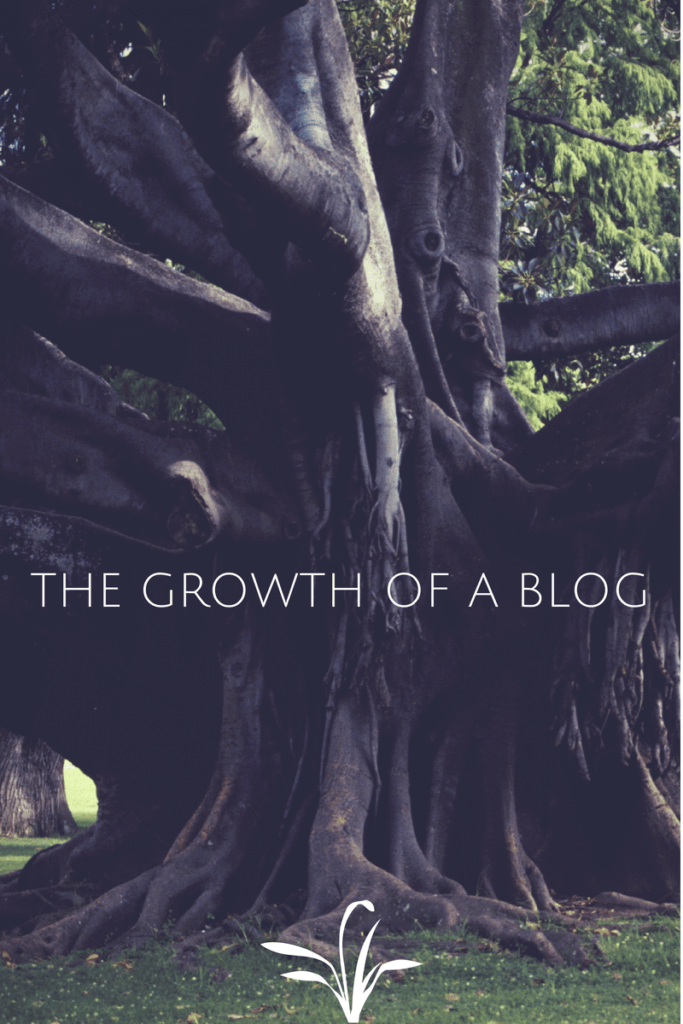 the growtH of a blog