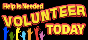 non-profit website volunteers